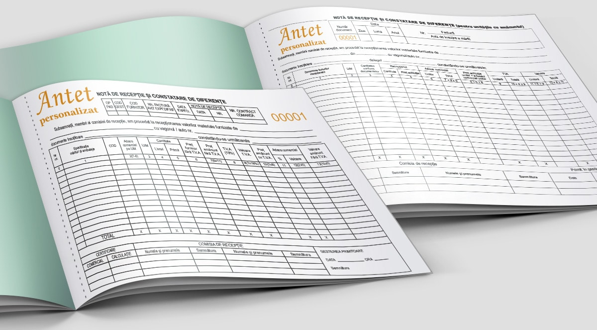 Note receptie constatare diferente - Tipizate personalizate Brasov - Europaper Brasov Centru Print