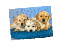 Presa termica 3D ST3042 Puzzle Personalizat - Europaper Brasov - Utilaje Finisare Print